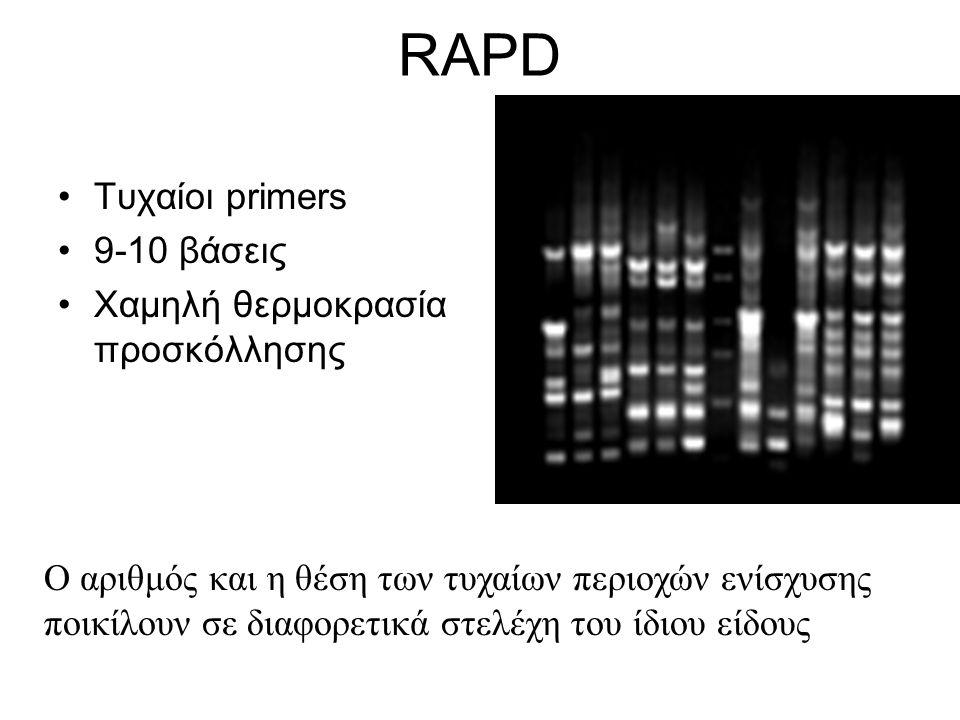 RAPD Τυχαίοι primers 9-10 βάσεις Χαμηλή θερμοκρασία προσκόλλησης