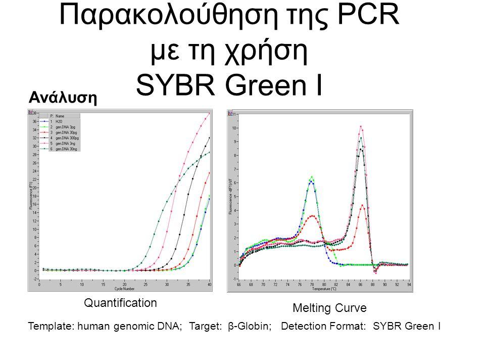 Παρακολούθηση της PCR με τη χρήση SYBR Green I