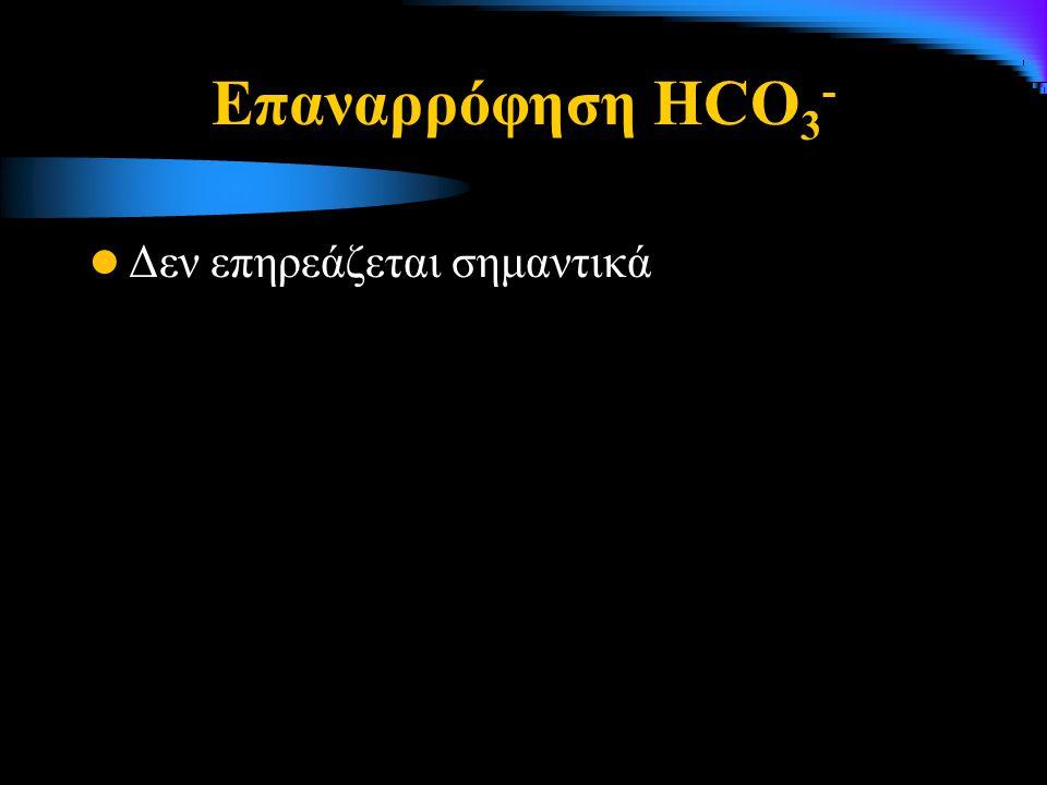 Επαναρρόφηση HCO3- Δεν επηρεάζεται σημαντικά