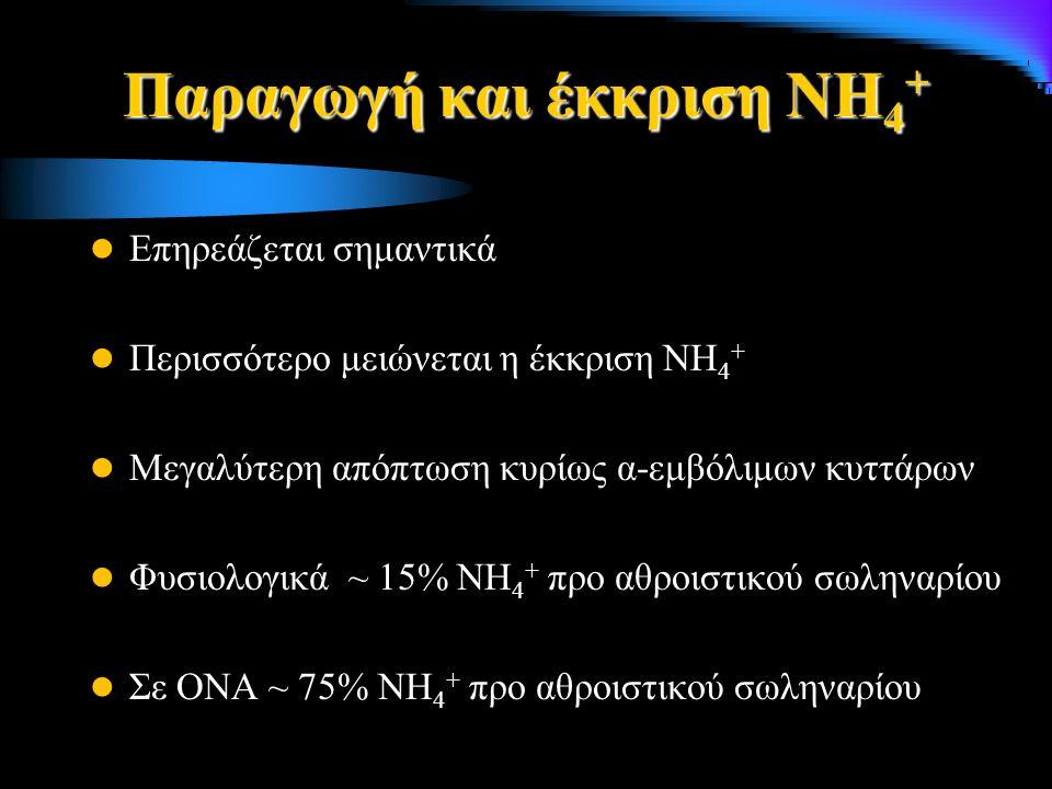 Παραγωγή και έκκριση ΝΗ4+