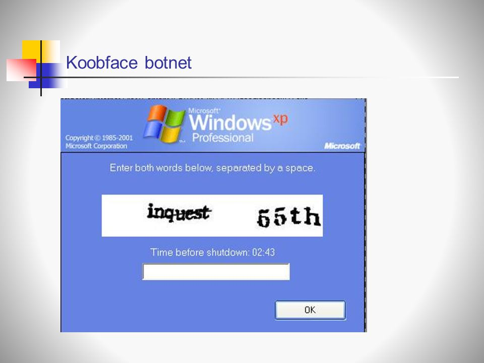 Koobface botnet