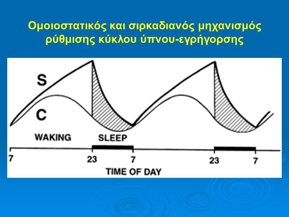 Ομοιοστατικός και σιρκαδιανός μηχανισμός ρύθμισης κύκλου ύπνου-εγρήγορσης