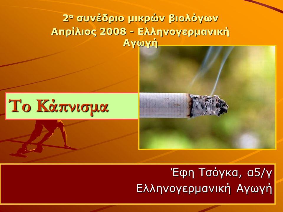 Έφη Τσόγκα, α5/γ Ελληνογερμανική Αγωγή