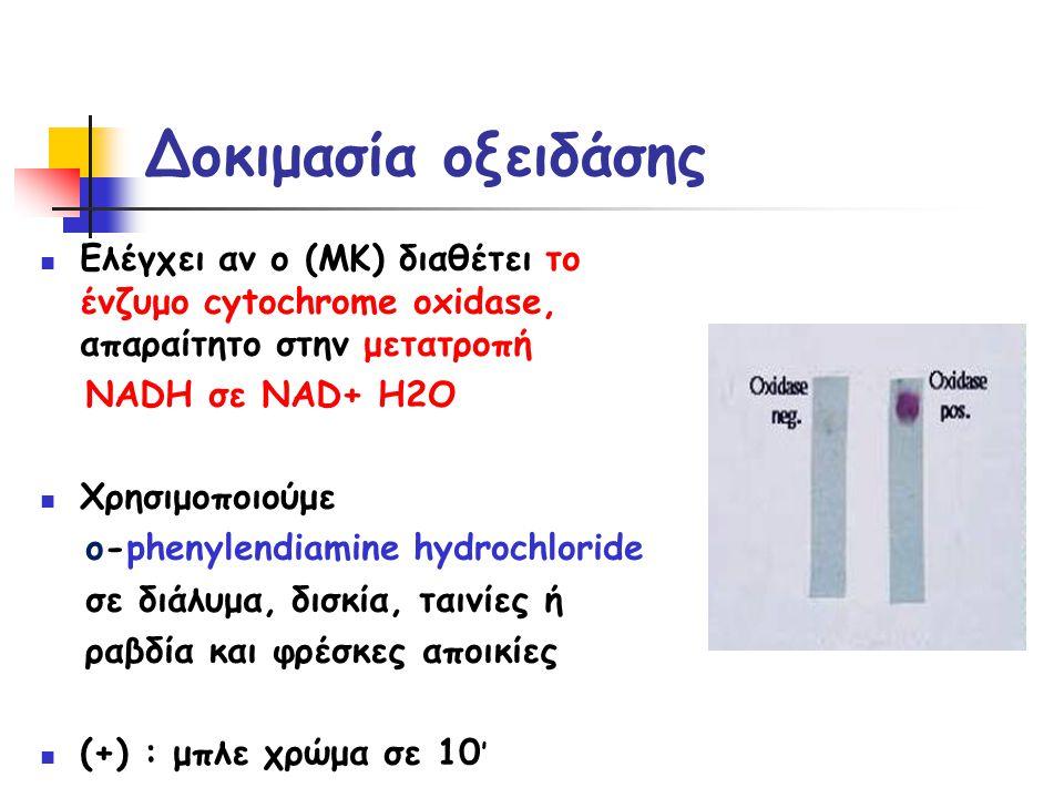 Δοκιμασία οξειδάσης Ελέγχει αν ο (ΜΚ) διαθέτει το ένζυμο cytochrome oxidase, απαραίτητο στην μετατροπή.