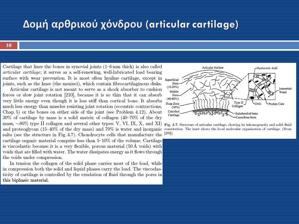 Δομή αρθρικού χόνδρου (articular cartilage)