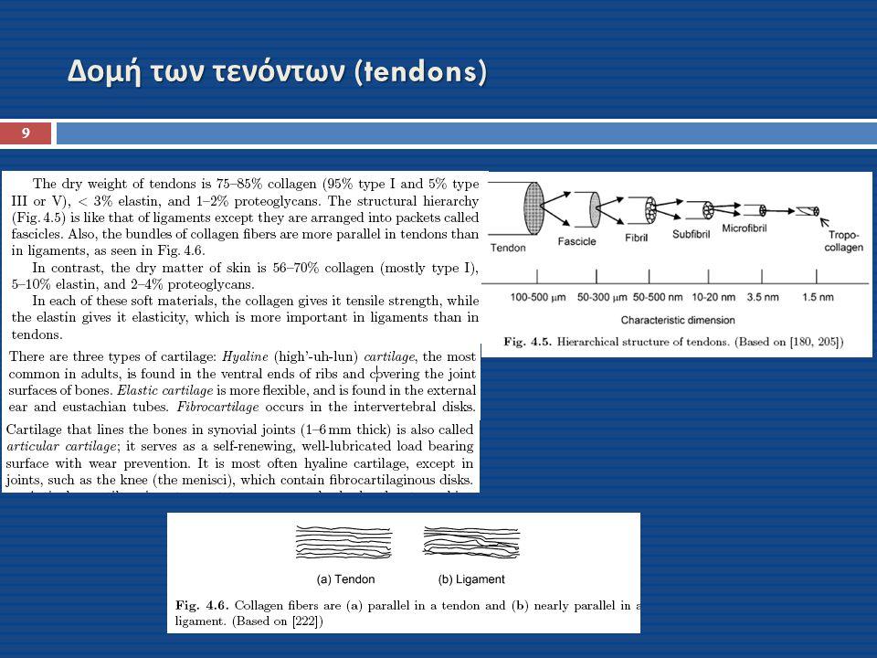 Δομή των τενόντων (tendons)