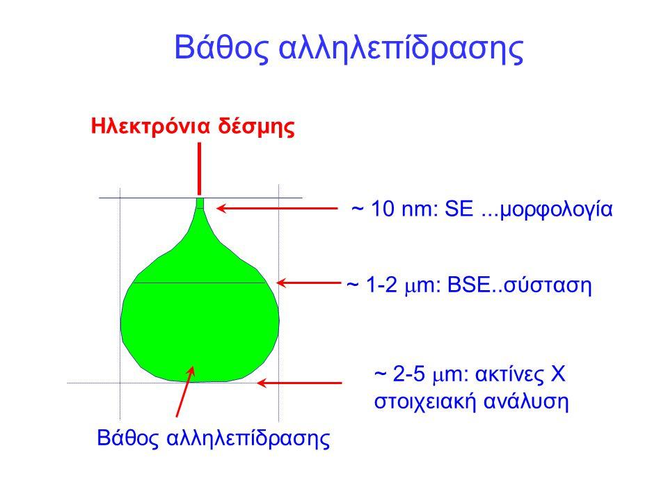 Βάθος αλληλεπίδρασης Ηλεκτρόνια δέσμης ~ 10 nm: SE ...μορφολογία
