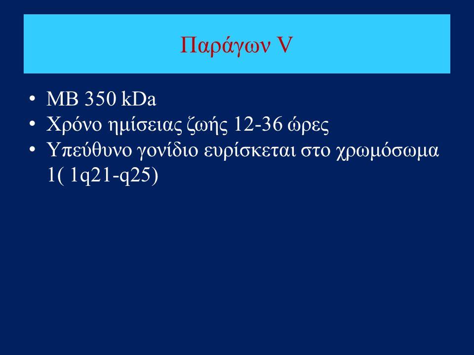 Παράγων V ΜΒ 350 kDa Χρόνο ημίσειας ζωής 12-36 ώρες