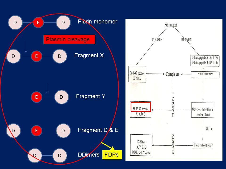 D D. E. Fibrin monomer. Plasmin cleavage. D. D. E. Fragment X. D. E. Fragment Y. D. D. E.