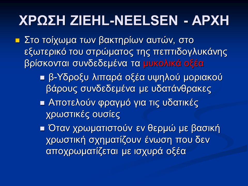 ΧΡΩΣΗ ZIEHL-NEELSEN - ΑΡΧΗ