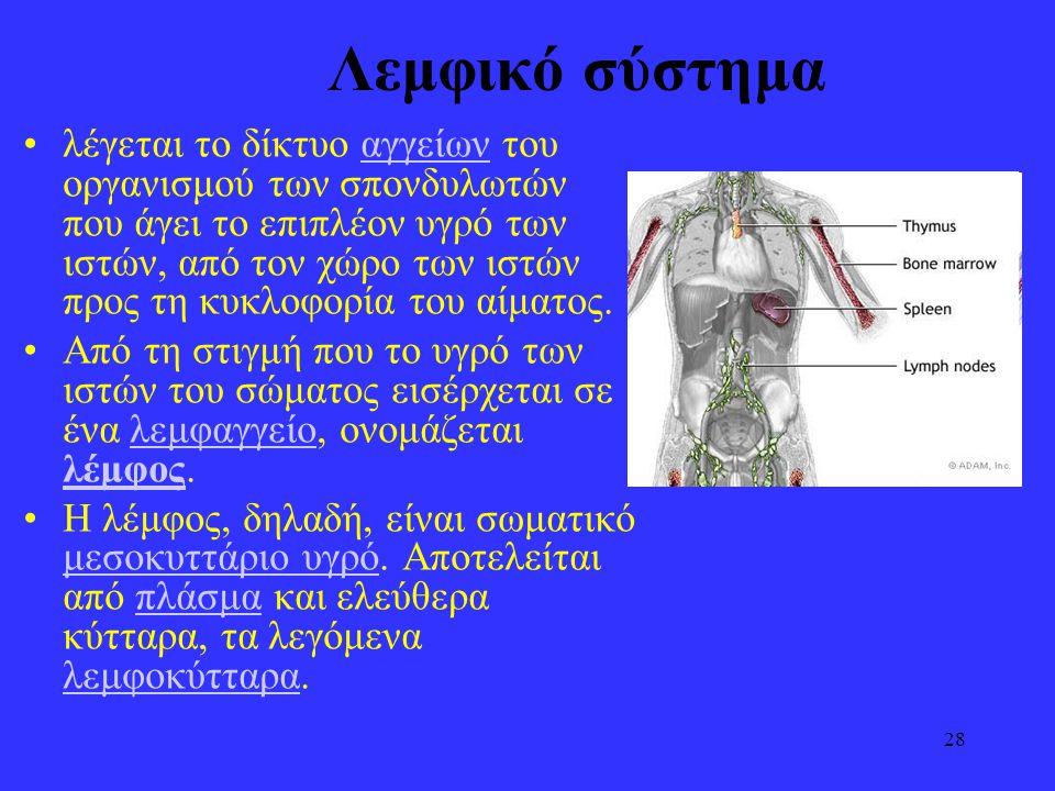 Λεμφικό σύστημα