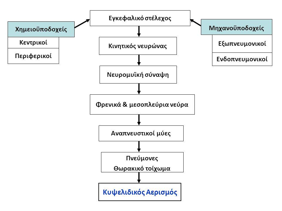 Φρενικά & μεσοπλεύρια νεύρα