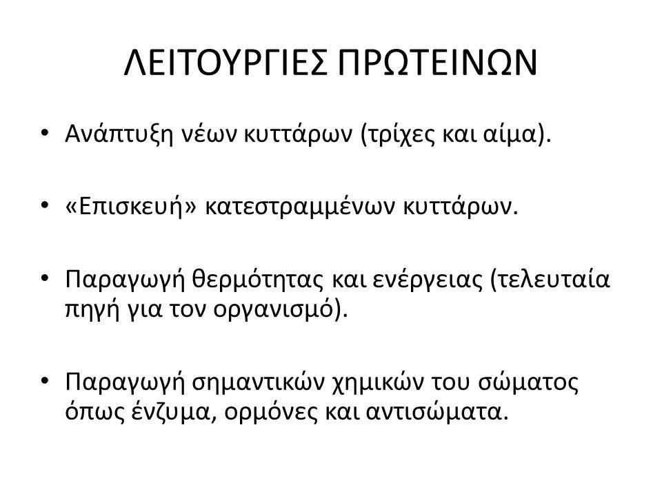ΛΕΙΤΟΥΡΓΙΕΣ ΠΡΩΤΕΙΝΩΝ