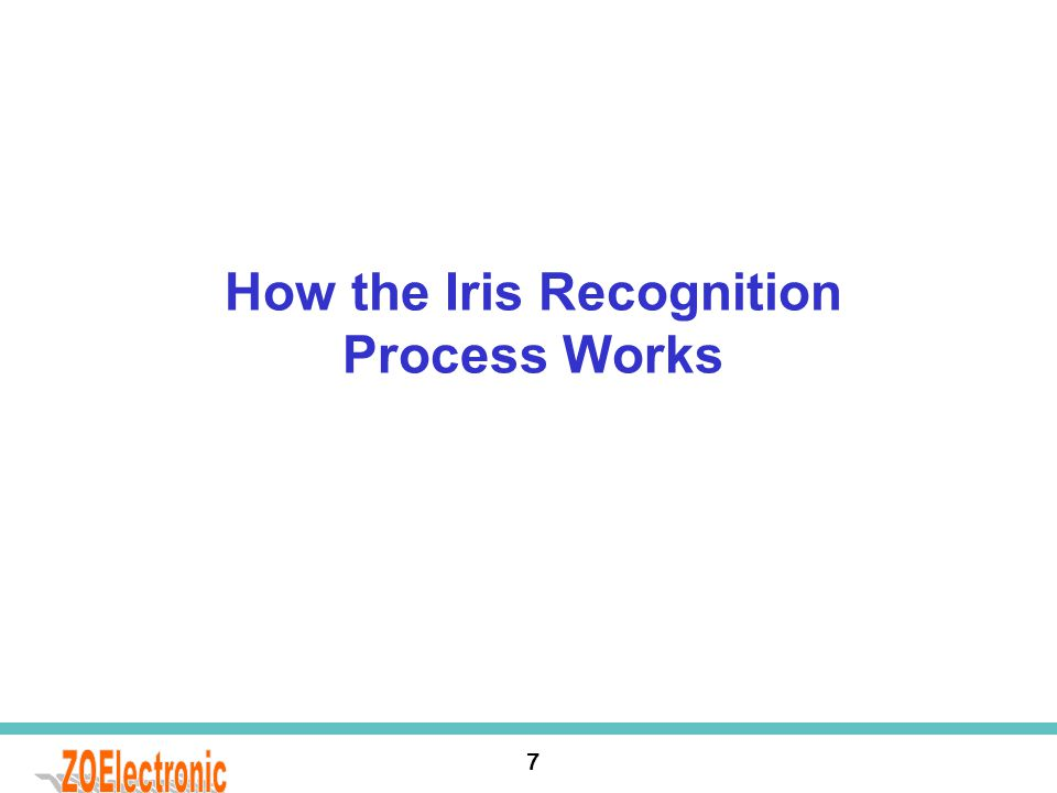 How the Iris Recognition Process Works