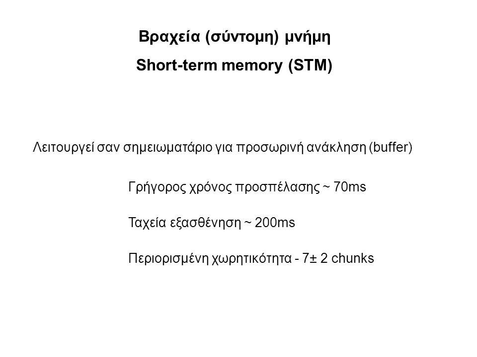 Βραχεία (σύντομη) μνήμη Short-term memory (STM)