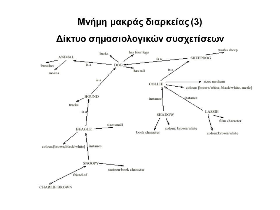 Μνήμη μακράς διαρκείας (3) Δίκτυο σημασιολογικών συσχετίσεων