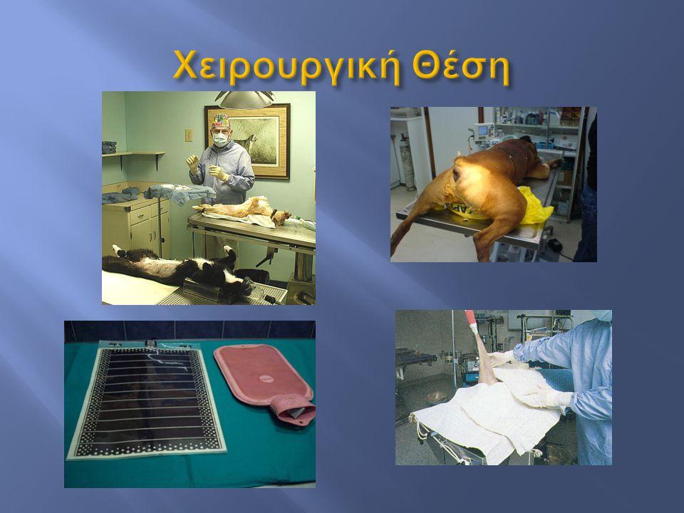 Χειρουργική Θέση