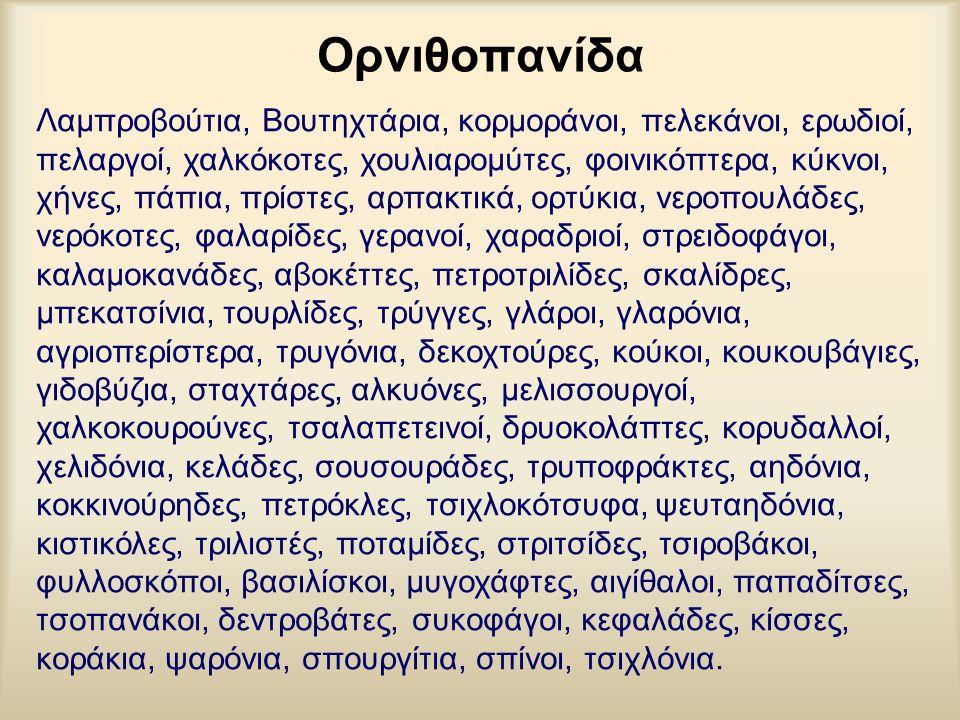Ορνιθοπανίδα