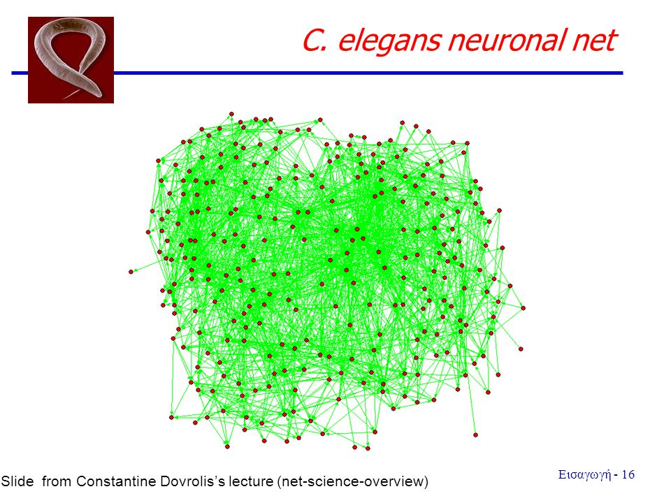 C. elegans neuronal net Slide from Constantine Dovrolis's lecture (net-science-overview)