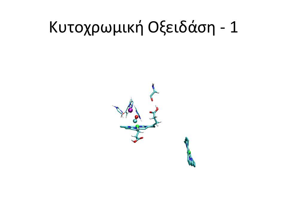 Κυτοχρωμική Οξειδάση - 1