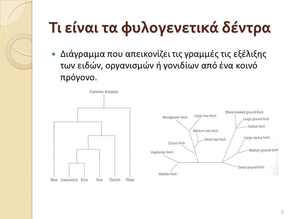 Τι είναι τα φυλογενετικά δέντρα