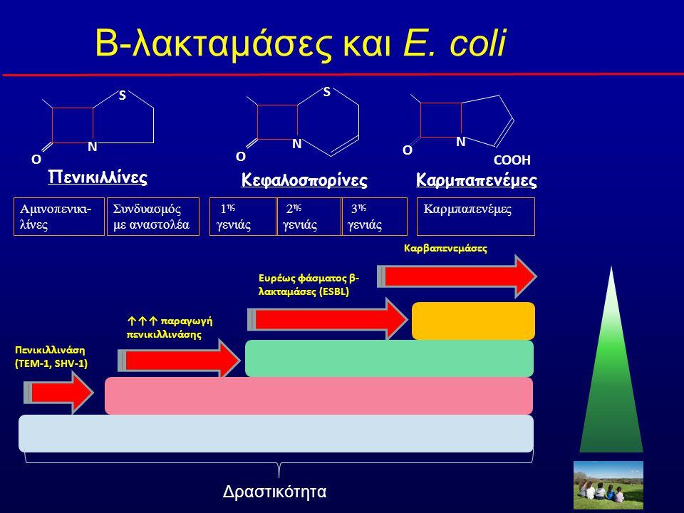 Β-λακταμάσες και E. coli
