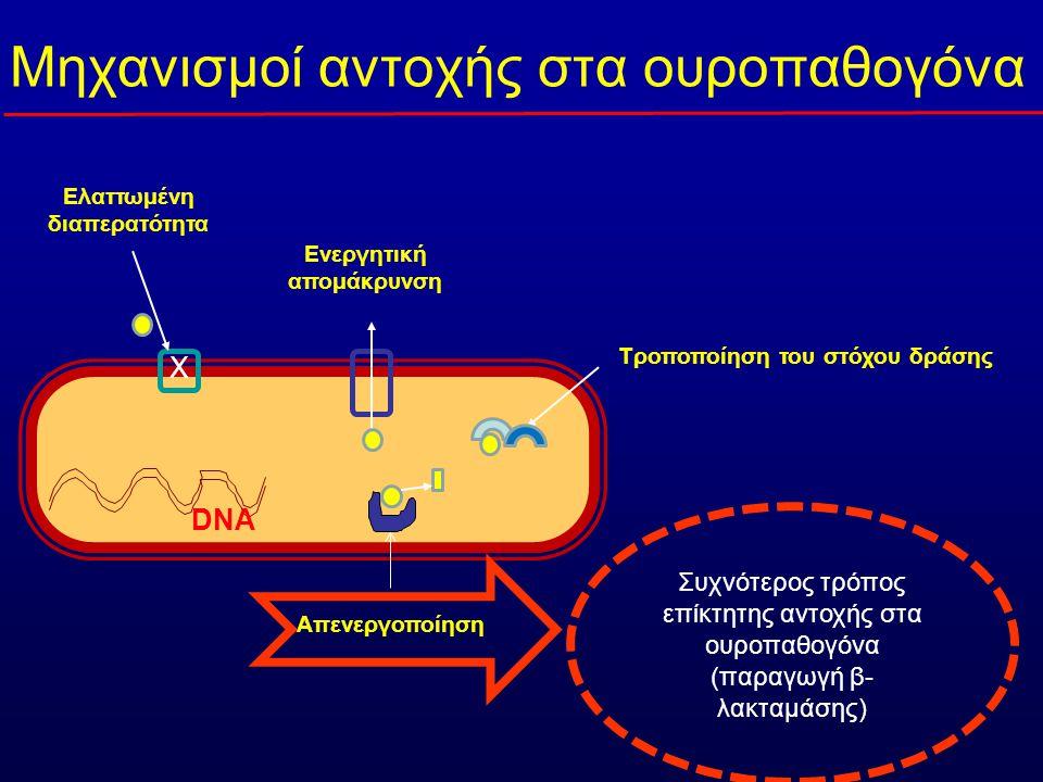 Mηχανισμοί αντοχής στα ουροπαθογόνα