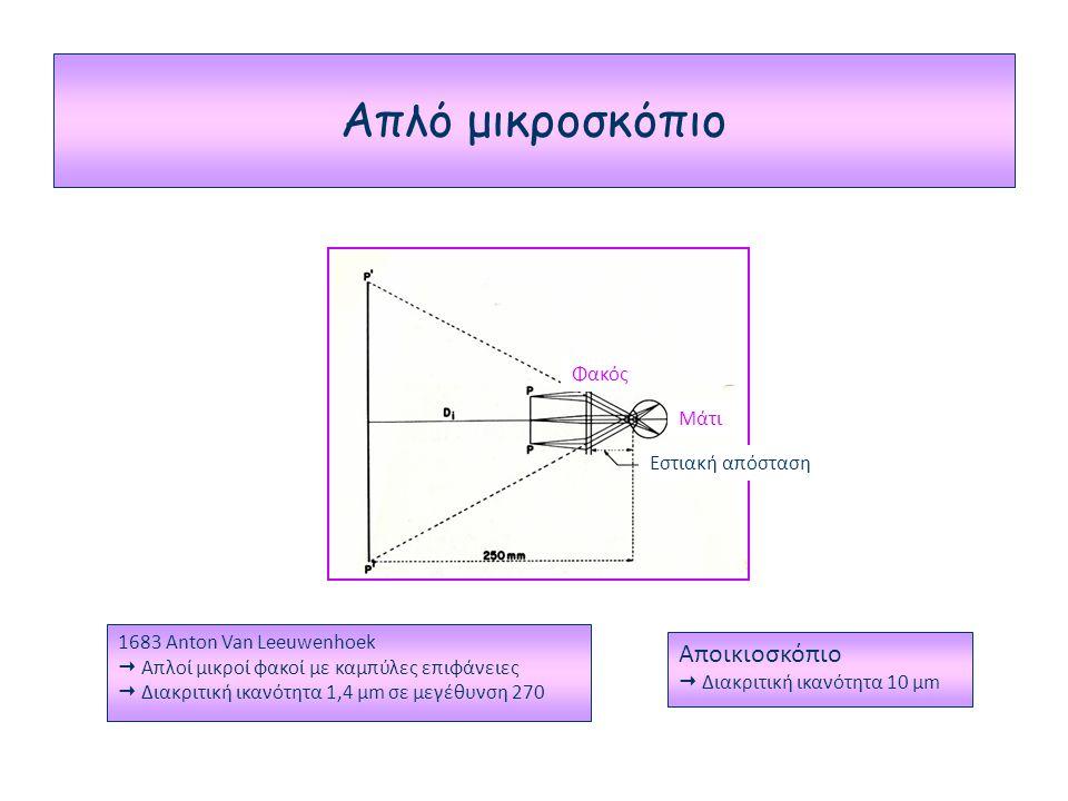 Απλό μικροσκόπιο Αποικιοσκόπιο Φακός Μάτι Εστιακή απόσταση