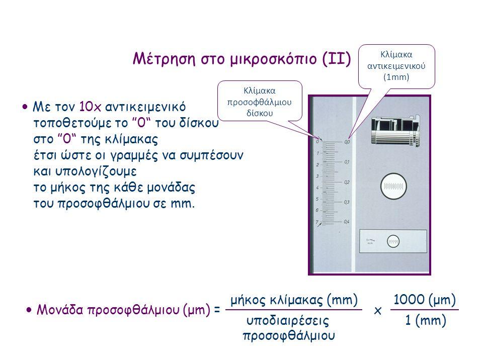 Μέτρηση στο μικροσκόπιο (ΙΙ)