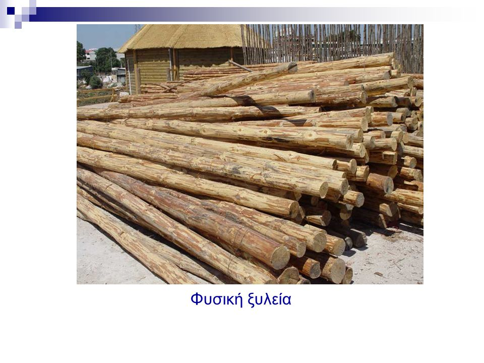 Φυσική ξυλεία