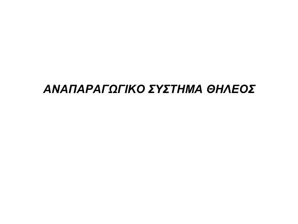 ΑΝΑΠΑΡΑΓΩΓΙΚΟ ΣΥΣΤΗΜΑ ΘΗΛΕΟΣ