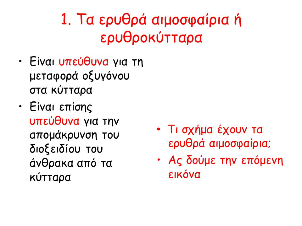 1. Τα ερυθρά αιμοσφαίρια ή ερυθροκύτταρα