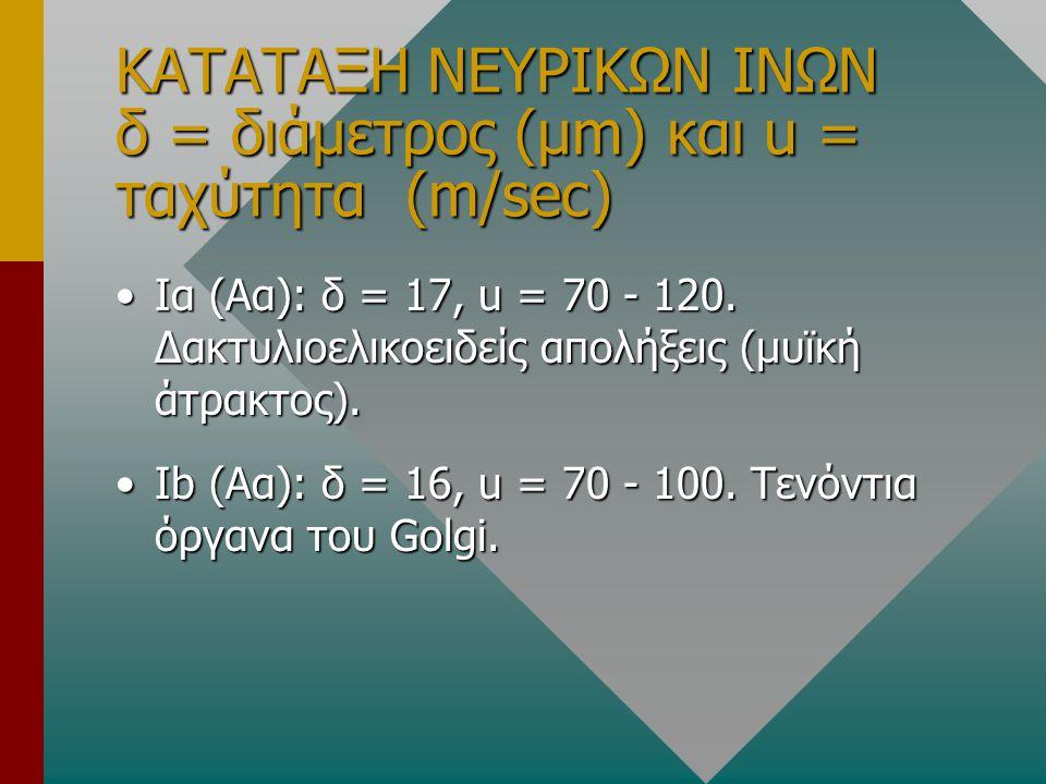 ΚΑΤΑΤΑΞΗ ΝΕΥΡΙΚΩΝ ΙΝΩΝ δ = διάμετρος (μm) και u = ταχύτητα (m/sec)