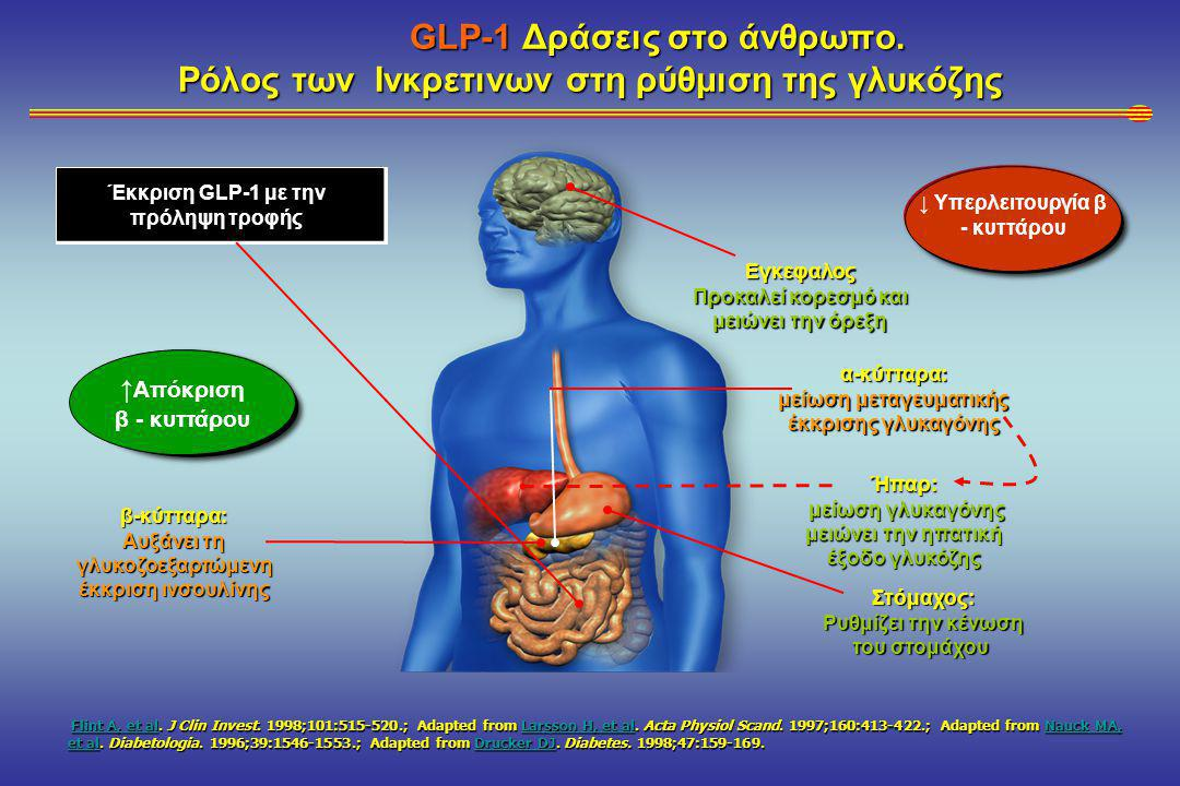 GLP-1 Δράσεις στο άνθρωπο