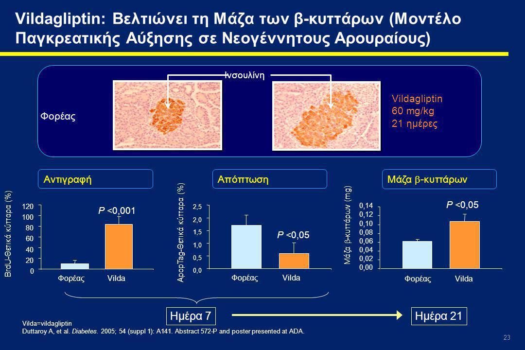Vildagliptin: Βελτιώνει τη Μάζα των β-κυττάρων (Μοντέλο Παγκρεατικής Αύξησης σε Νεογέννητους Αρουραίους)
