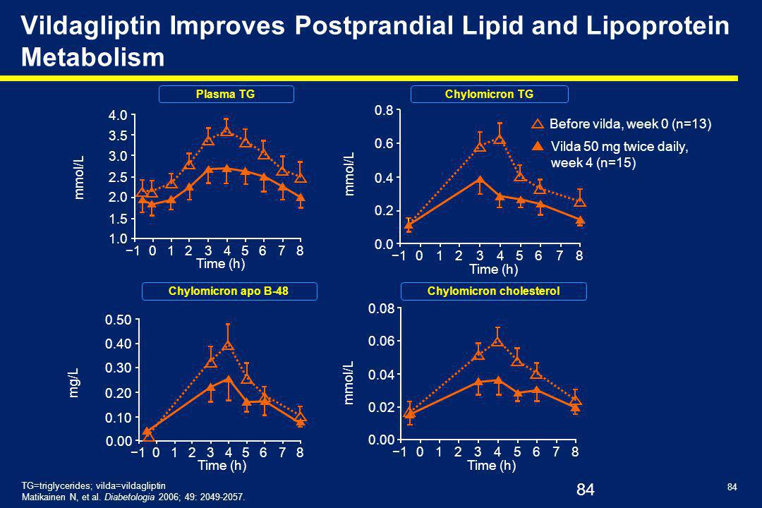 Vildagliptin Improves Postprandial Lipid and Lipoprotein Metabolism