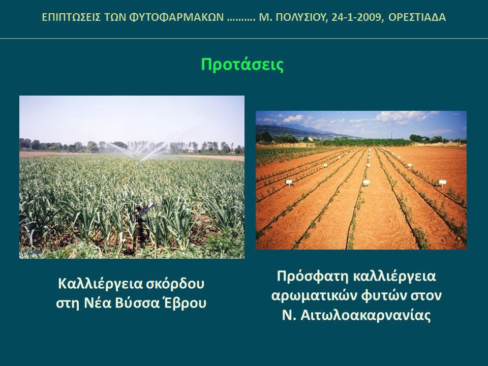 Προτάσεις Πρόσφατη καλλιέργεια αρωματικών φυτών στον
