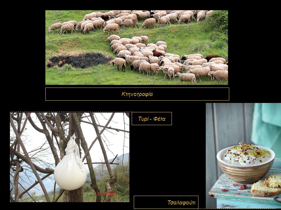 Κτηνοτροφία Τυρί - Φέτα Τσαλαφούτι