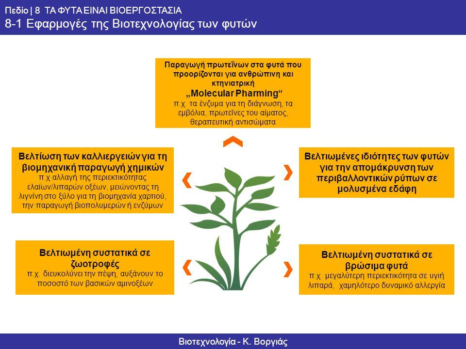 Βελτιωμένη συστατικά σε βρώσιμα φυτά