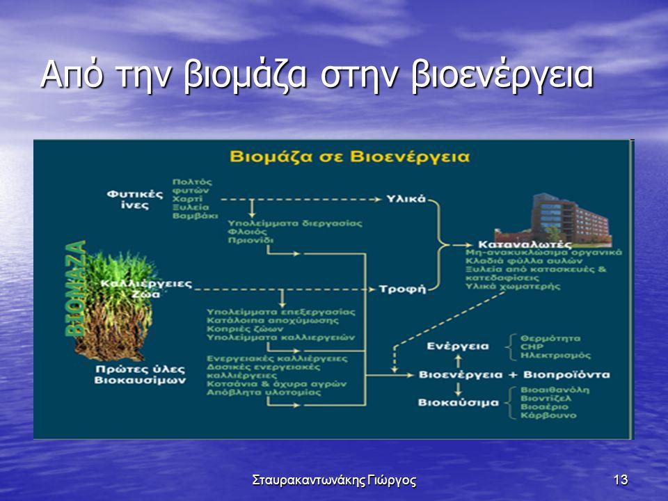 Από την βιομάζα στην βιοενέργεια