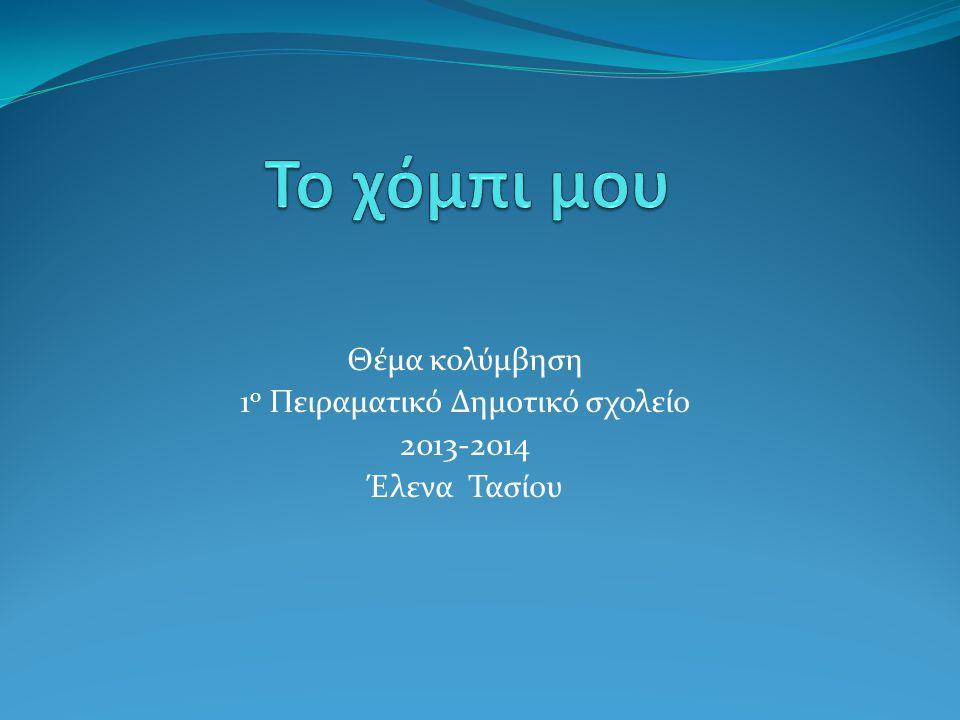 Θέμα κολύμβηση 1ο Πειραματικό Δημοτικό σχολείο 2013-2014 Έλενα Τασίου