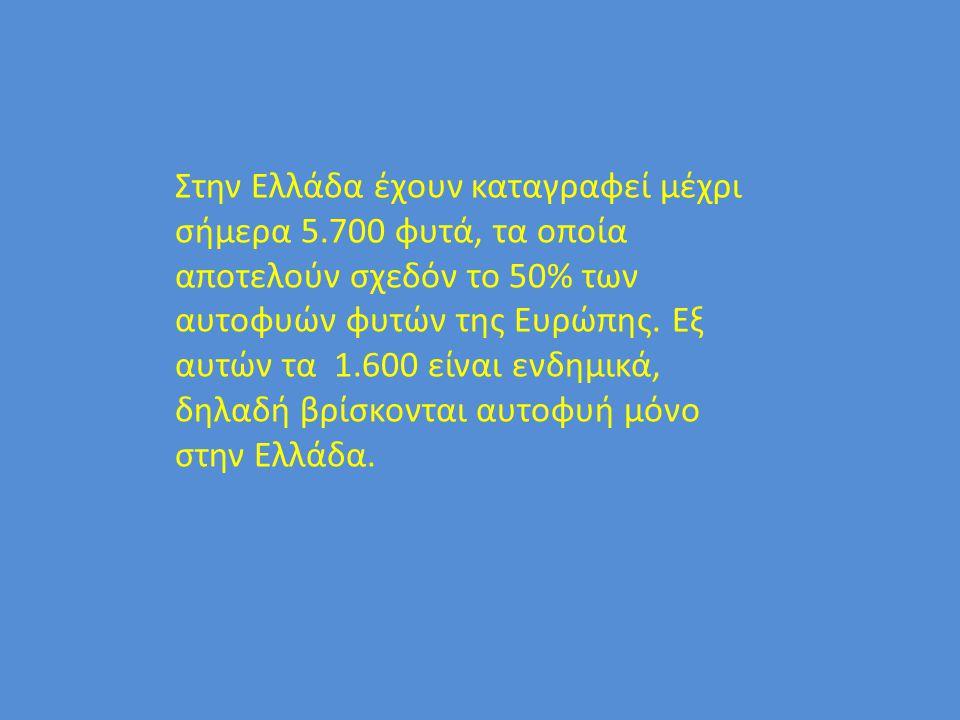 Στην Ελλάδα έχουν καταγραφεί μέχρι σήμερα 5