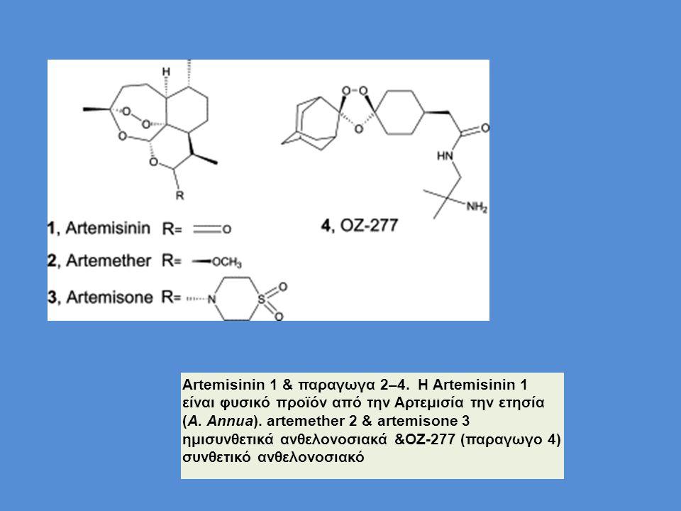 Artemisinin 1 & παραγωγα 2–4