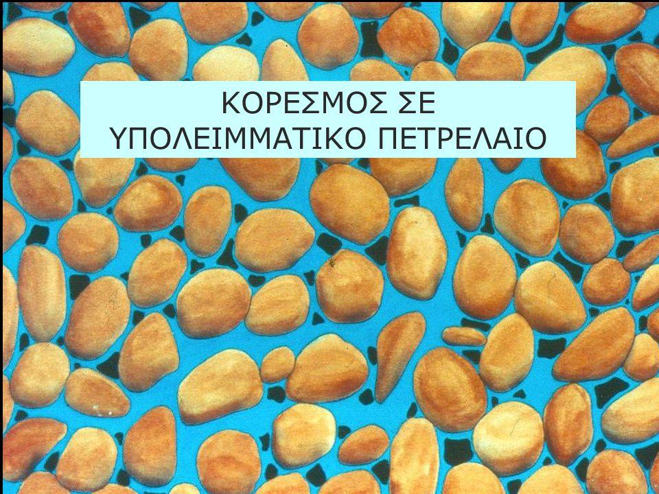 ΚΟΡΕΣΜΟΣ ΣΕ ΥΠΟΛΕΙΜΜΑΤΙΚΟ ΠΕΤΡΕΛΑΙΟ