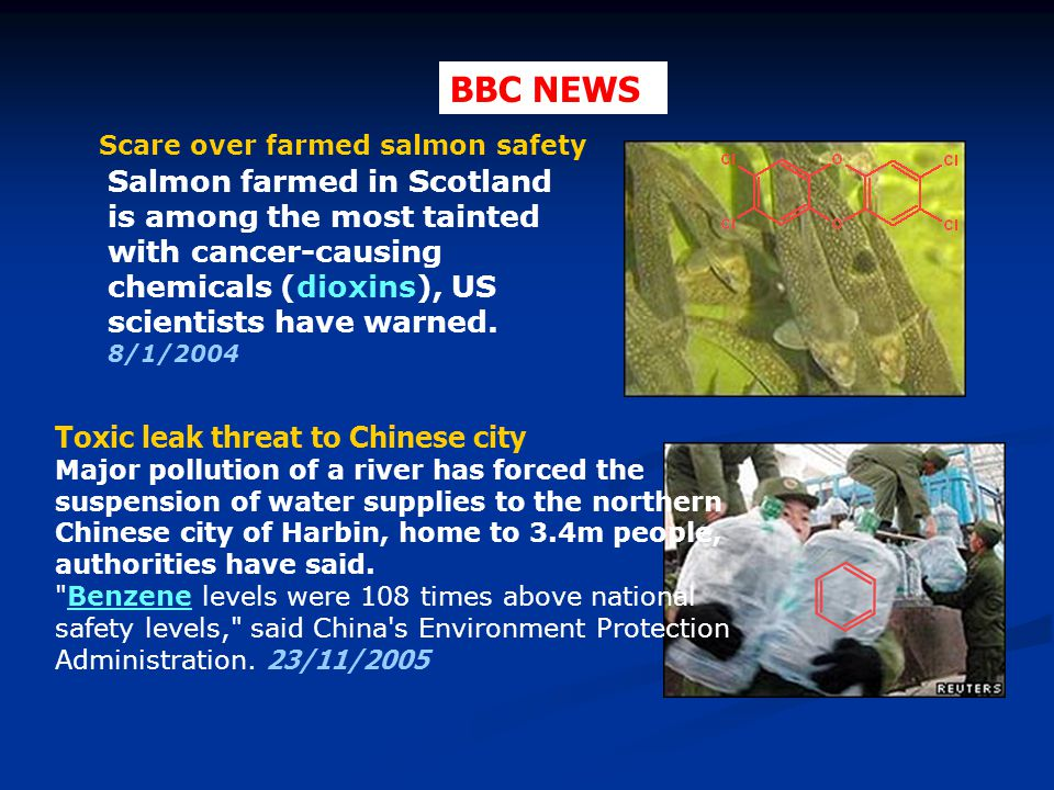 BBC NEWS Scare over farmed salmon safety.