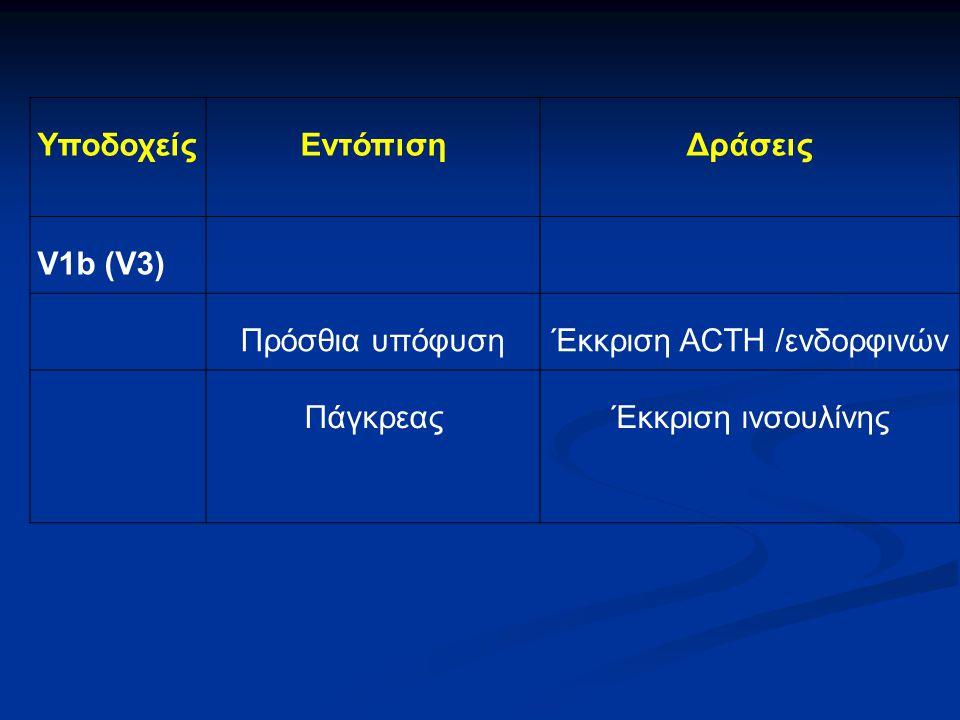 Έκκριση ACTH /ενδορφινών