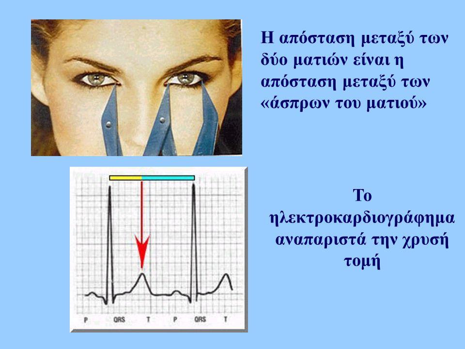 Το ηλεκτροκαρδιογράφημα αναπαριστά την χρυσή τομή