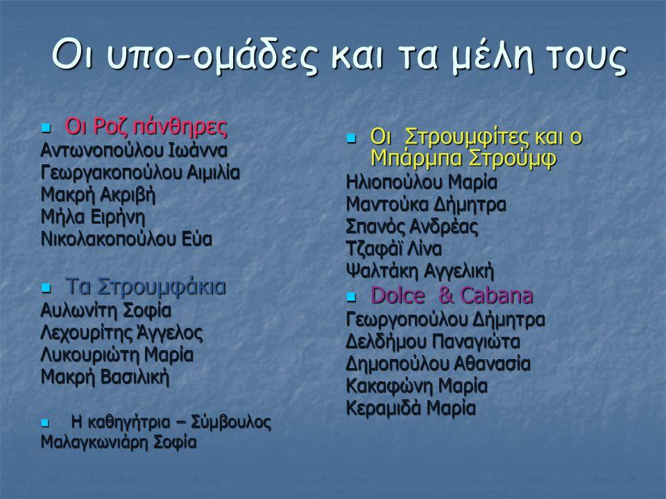 Οι υπο-ομάδες και τα μέλη τους