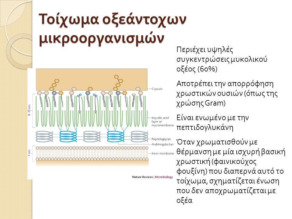 Τοίχωμα οξεάντοχων μικροοργανισμών