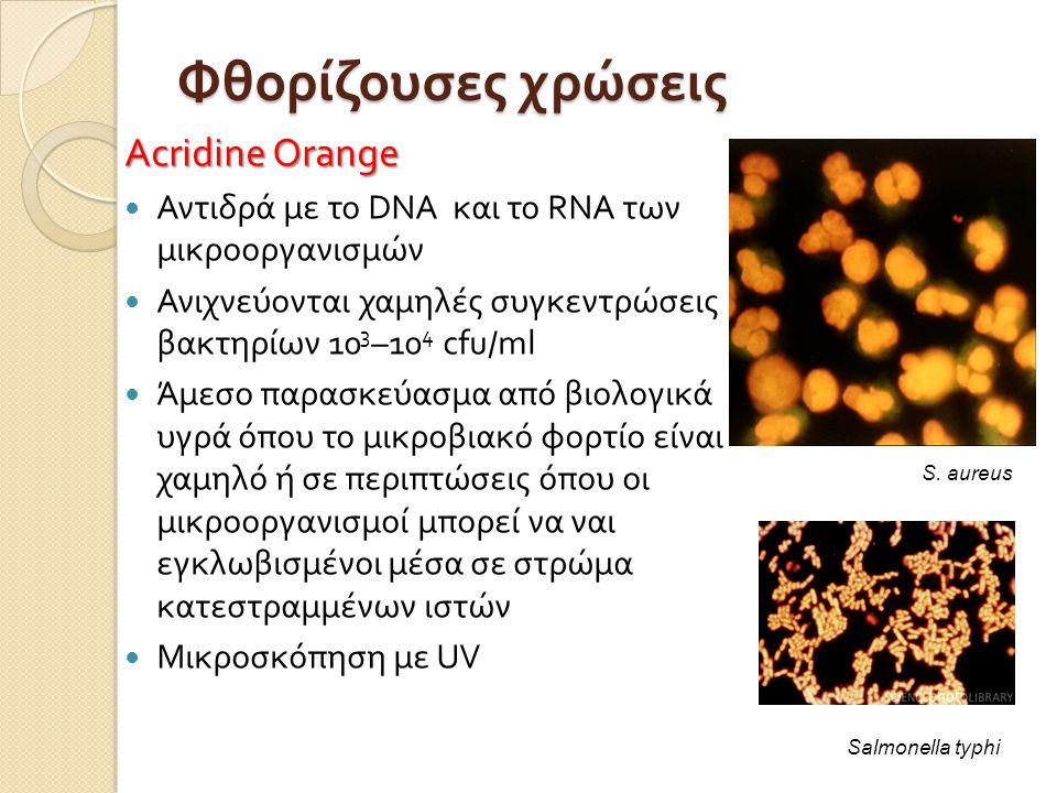 Φθορίζουσες χρώσεις Acridine Orange